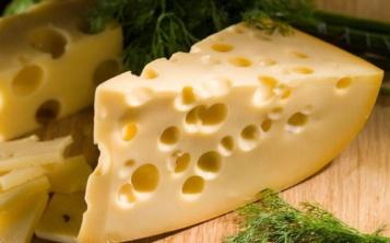 Муляжи сыров, батонов колбасы