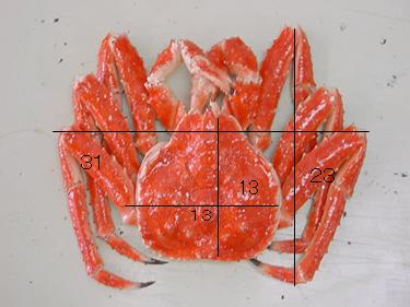 Муляж камчатского краба 31 см
