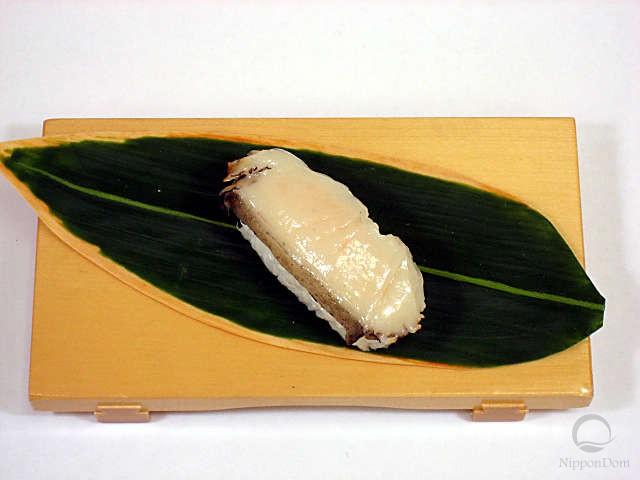 Муляж морского ушка-2