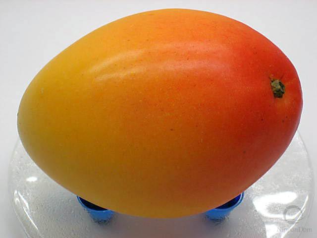 """Муляж манго """"Альфонсо"""""""