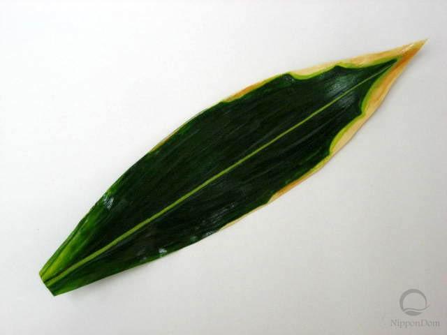 Лист полосатого бамбука (31 см)