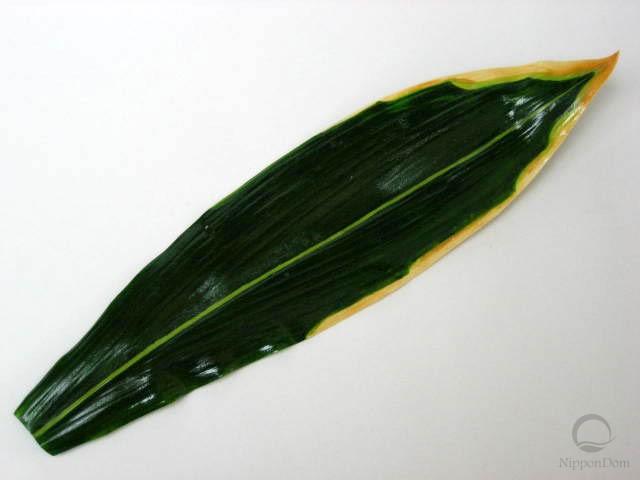 Лист полосатого бамбука (38 см)