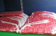 Муляж пластины  говядины-3