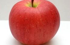 Муляж яблока Фуджи (90-100 мм)