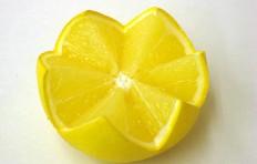 Муляж половинки грейпфрута (55/ 90 мм)