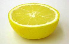 Муляж половинки грейпфрута (34/ 84 мм)