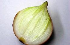Муляж половинки луковицы (84/ 100/ 40 мм)