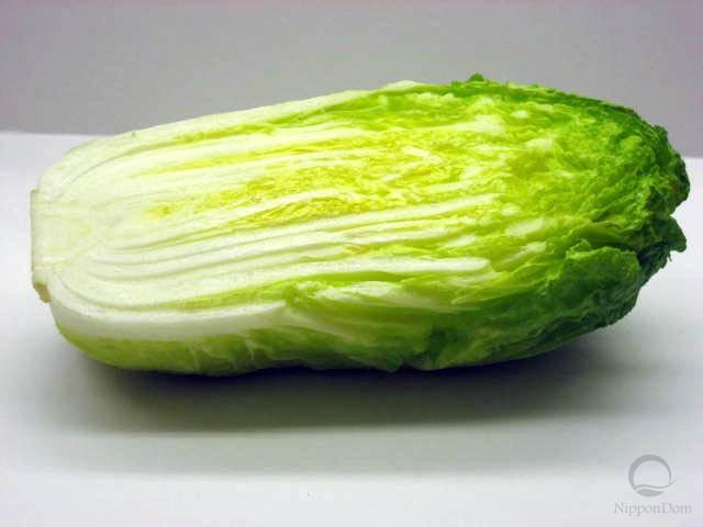 Муляж китайской капусты
