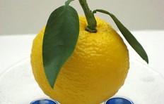 Муляж лимона (80/ 75 мм)