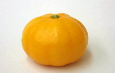 Муляж мандарина (43/ 65 мм)