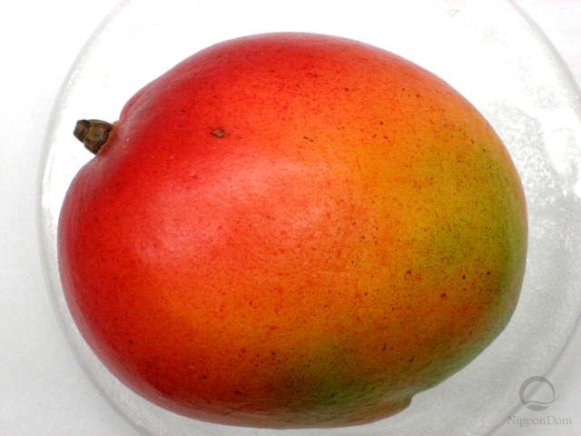 Муляж мексиканского манго