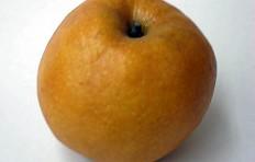 Муляж груши-яблока (130/ 135 мм)