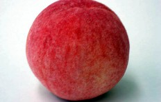 Муляж персика (80/ 75 мм)