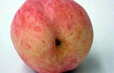Муляж персика (90/ 100 мм)