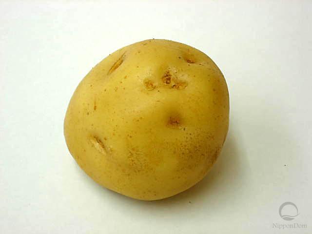 Муляж картофеля