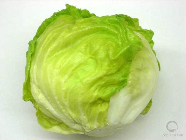 Муляж салата Латук
