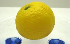 Муляж лимона (50/ 55 мм)
