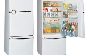 Чтобы показать вместимость холодильника, его наполняют муляжами продуктов.